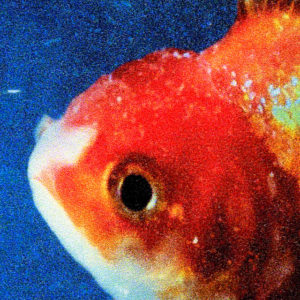 Vince Staples: Big Fish Theory(2017)